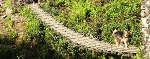 N-Hängebrücke