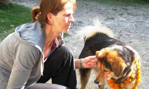 Tihar Festival: Tag des Hundes